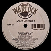 Funky or What von Joint Venture