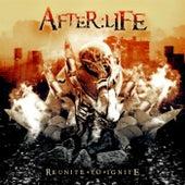 Reunite to Ignite de Afterlife