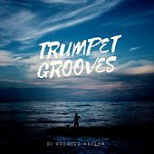 Trumpet Grooves de Dj Rodrigo Abelha