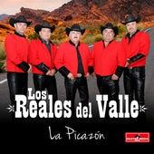 La Picazón by Los Reales del Valle