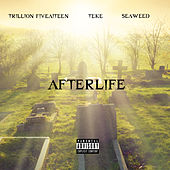 Afterlife by Trillion Fiveaiteen