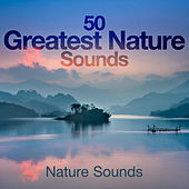50 Greatest Nature Sounds by Nature Sounds (1)
