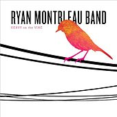 Heavy On the Vine by Ryan Montbleau Band
