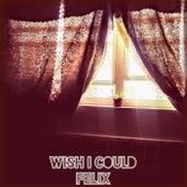 Wish I Could von Felix (Rock)