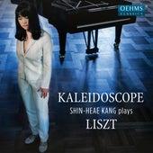 Kaleidoscope von Shin-Heae Kang