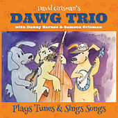 The Dawg Trio de David Grisman
