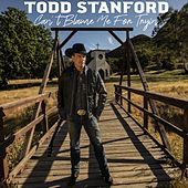 Can't Blame Me for Tryin' by Todd Stanford