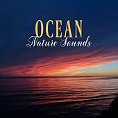 Ocean Nature Sounds by Various Artists