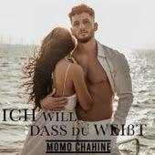 Ich will dass du weißt von Momo Chahine