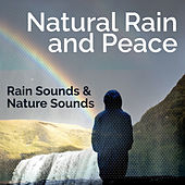 Natural Rain and Peace by Rain Sounds