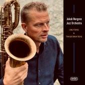 Creations & Transformations de Jakob Norgren Jazz Orchestra