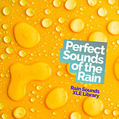 Perfect Sounds of the Rain by Rain Sounds XLE Library