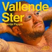 Vallende Ster by Kraantje Pappie