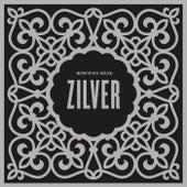 Zilver de Rowwen Hèze