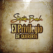 El Privilegio De Quererte by La Séptima Banda