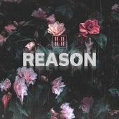 Reason von 11:11