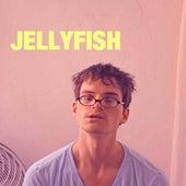 Jellyfish by Julian Smith
