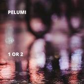 1 Or 2 de Pelumi