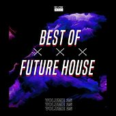 Best of Future House, Vol. 25 by Various Artists