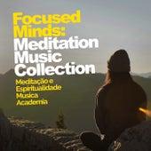 Focused Minds: Meditation Music Collection de Meditação e Espiritualidade Musica Academia