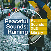 Peaceful Sounds: Raining by Rain Sounds XLE Library