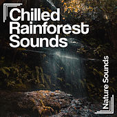 Chilled Rainforest Sounds by Nature Sounds (1)