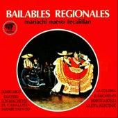 Bailables Regionales de Mariachi Nuevo Tecalitlan