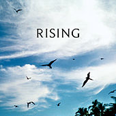 Rising de Reuben And The Dark