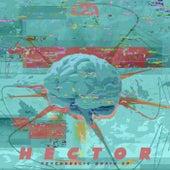 Psyhedelic Brain EP de Hector