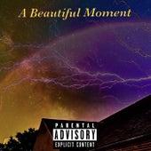 A Beautiful Moment by Rigo