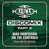 Mad Professor on the Controls - Discomix Pt. 2 de Various Artists