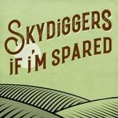 If I'm Spared de Skydiggers