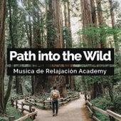 Path into the Wild de Musica de Relajación Academy