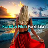 Feels Like by Kandi