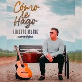 Cómo Le Hago von Luisito Muñoz