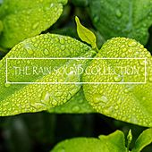 The Rain Sound Collection by Rain Sounds (2)