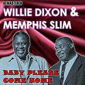 Baby Please Come Home de Willie Dixon