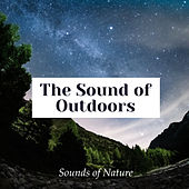 The Sound of Outdoors de Sounds Of Nature