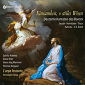 Einsamkeit, o stilles Wesen: German Cantatas of the Baroque de Various Artists