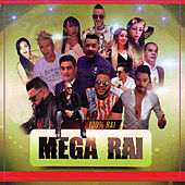 Mega Rai by Various Artists