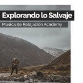 Explorando lo Salvaje de Musica de Relajación Academy