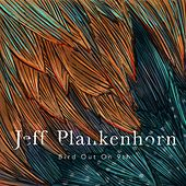 Bird Out On 9th by Jeff Plankenhorn