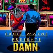 Damn by Ernie Wayne