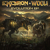 Evolution EP von Excision
