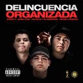 Delincuencia Organizada by Various Artists