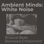 Ambient Minds: White Noise de Binaural Beats Brainwave Entrainment