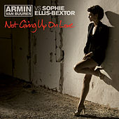 Not Giving Up On Love de Armin Van Buuren