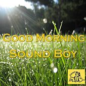Good Morning Sound Boy by Various Artists