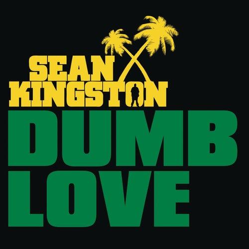 Dumb Love by Sean Kingston