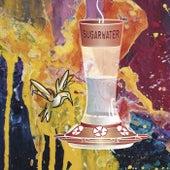 Sugar Water by Jane Q. Public